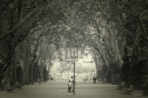 Playground and trees